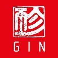 GIN Gliders
